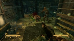 Test Fallout New Vegas : Honest Hearts Xbox 360 - Screenshot 23