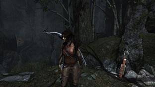 Tomb Raider : Un DLC qui ajoute