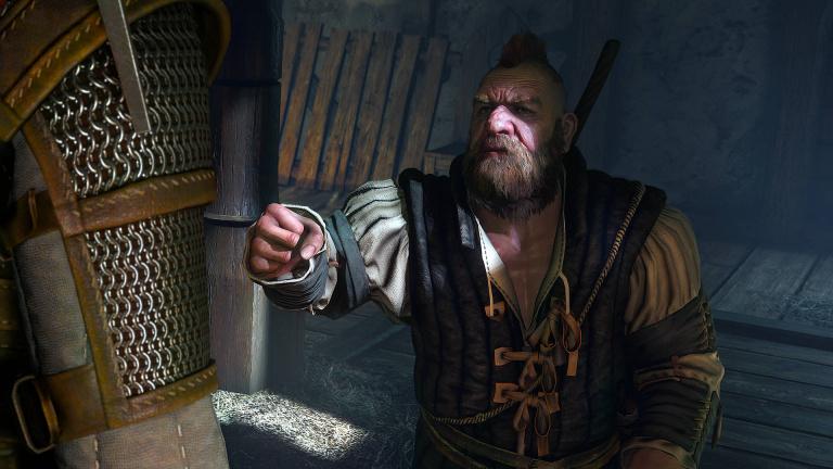 The Witcher 3 : Des images pour illustrer Ciri, Zoltan, etc.