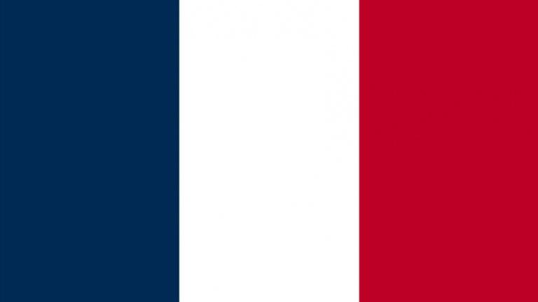 Le jeu vidéo en France en 2014