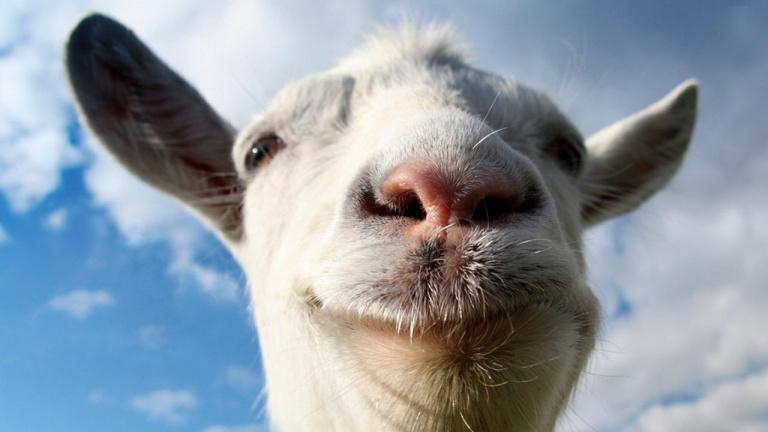 Goat Simulator va rendre chèvre la PS4
