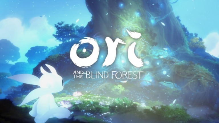 Le <b>jeu</b> de survie The <b>Forest</b> arrive en 2018 sur PlayStation 4 - Gamekult