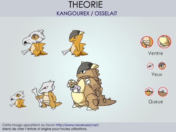 Osselait, un Kangourex orphelin ? De nouveaux indices confirment la théorie
