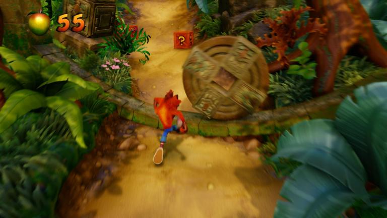 Niveau 2 : Jungle Rollers