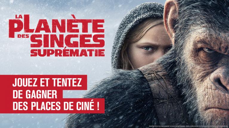 La Planète des Singes : Suprématie sort aujourd'hui au cinéma