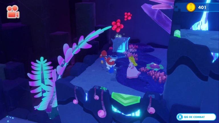 Monde 4 - S : Grotte secrète