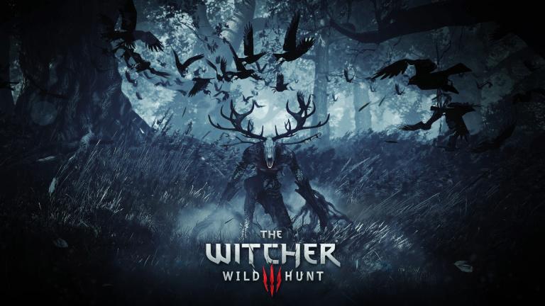 Witcher 3 Noclip