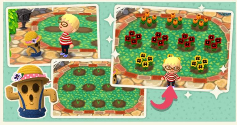 Animal Crossing : Pocket Camp se met à jour