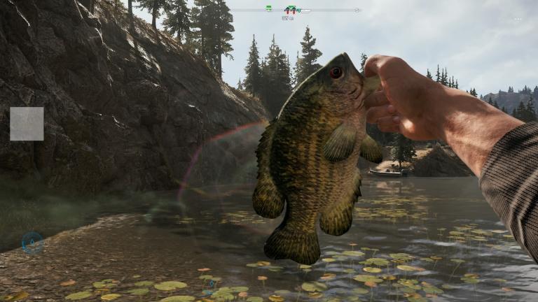 Comment obtenir rapidement une canne et pêcher ?