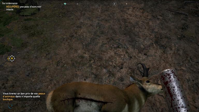 Ce que vous devez savoir sur la chasse