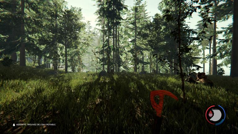 un bon site de rencontre forest