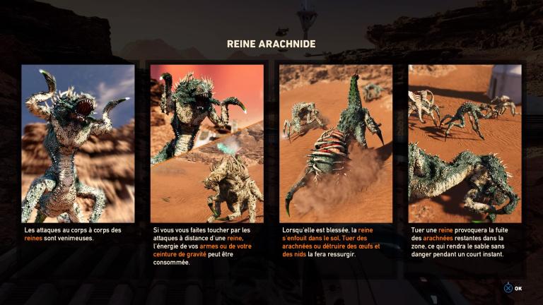 Position des 15 Reines Arachnées