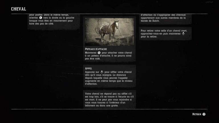 Tutoriels : cheval