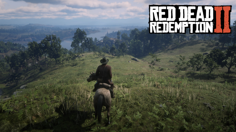 Red Dead Redemption 2 : collectibles, missions annexes, soluce des 100%