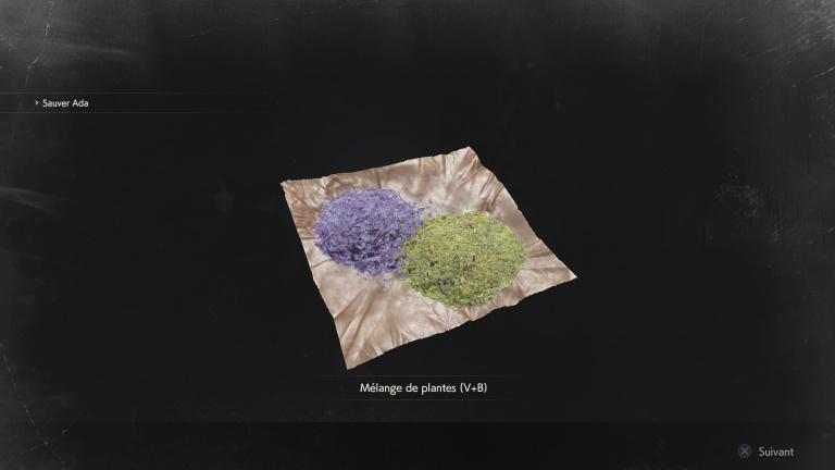 Toutes les combinaisons de plantes et leurs effets : soins, réduction des dégâts...
