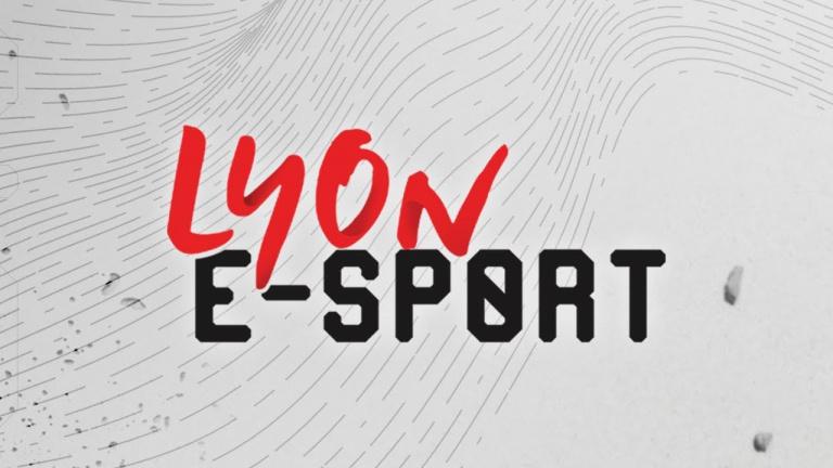 Lyon eSport 2019 : Le tournoi Fortnite faussement annulé pour empêcher les attaques DDOS