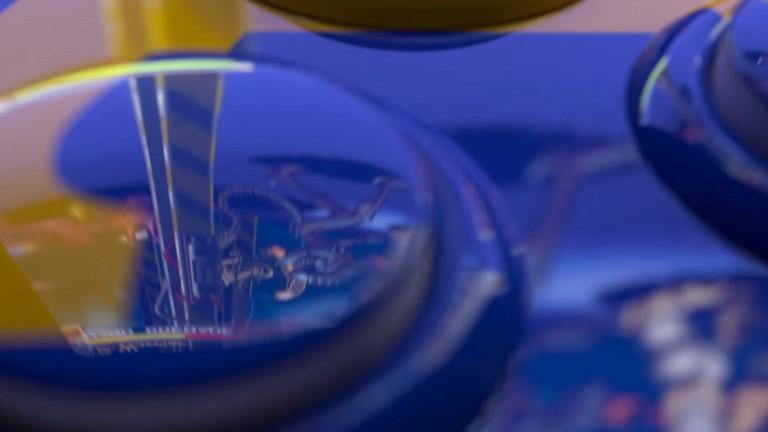 Capcom tease un contenu lié à Street Fighter et Alien vs Predator