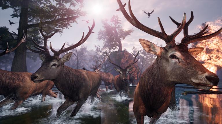 AWAY : The Survival Series, quand le jeu vidéo s'inspire des documentaires animaliers