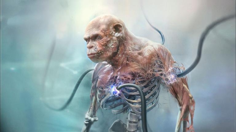 Beyond Good & Evil 2 : De nouveaux artworks pour patienter