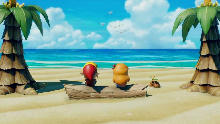 Zelda : Link's Awakening, guides des annexes : Fragments de coeur, coquillages, quêtes secondaires, collectibles, secrets, portails de téléportation...