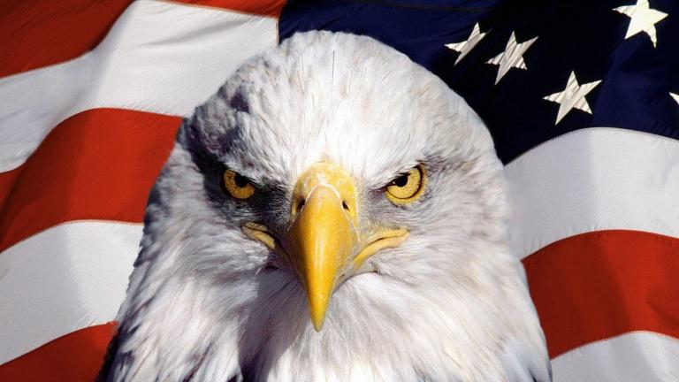 Etats-Unis : Kakarot au sommet des ventes en janvier 2020