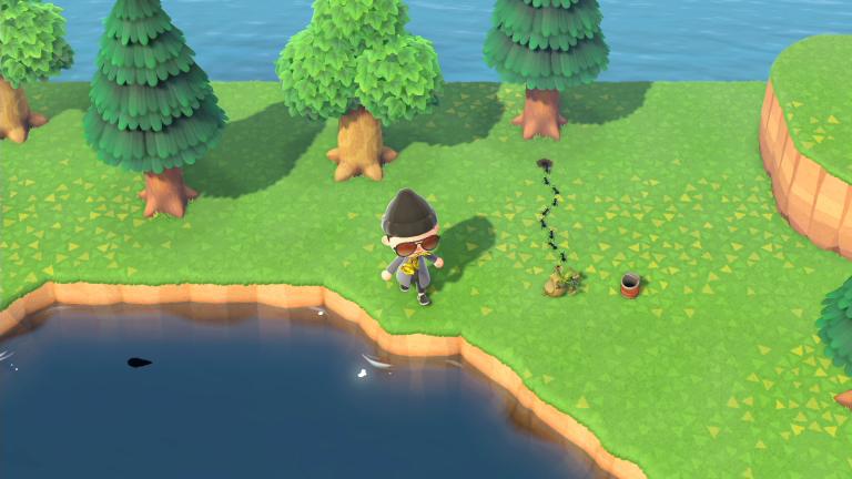 Animal Crossing New Horizons : mouche, fourmi, comment les ajouter à votre bébêtopédie ?