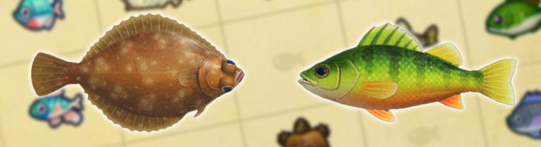 Animal Crossing New Horizons, changements d'avril : nouveaux insectes, poissons et créatures marines… notre guide