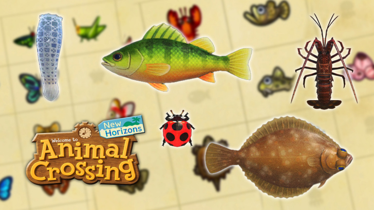 Animal Crossing New Horizons, October Guide: New Insects, Fish, and Sea Creatures