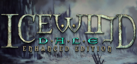 Icewind Dale - Enhanced Edition sur iOS