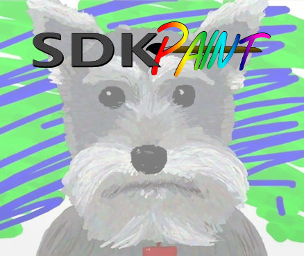 SDK Paint sur WiiU