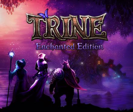 Trine Enchanted Edition sur PS4