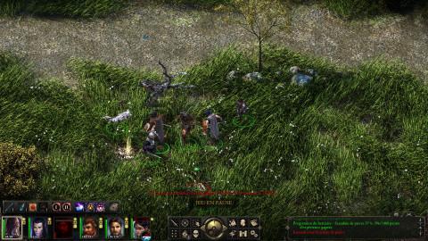 Pillars of Eternity, le RPG que les fans de Baldur's Gate attendaient ?