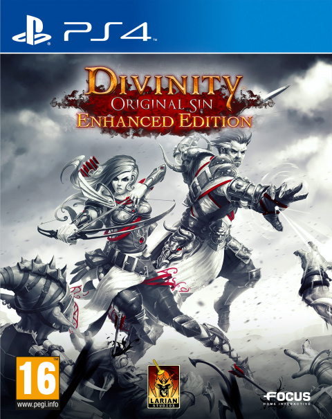 Jaquette de Divinity : Original Sin - Enhanced Edition