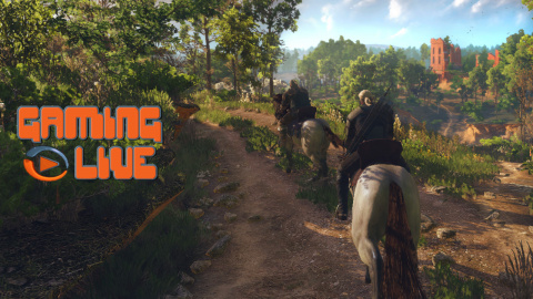Jaquette de The Witcher 3 : Wild Hunt - Les graphismes d'un monde ouvert 3/4