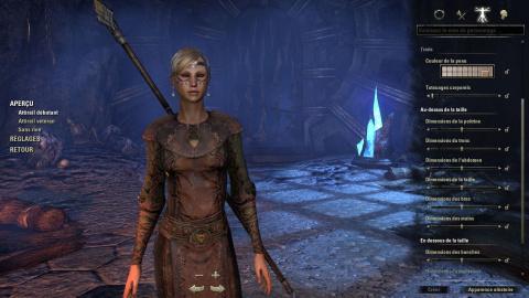 Une nouvelle expérience, The Elder Scrolls Online