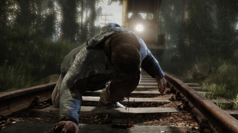 Jaquette de The Vanishing of Ethan Carter, l'enquête reprend sur PS4