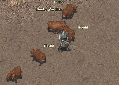 Le bestiaire de Fallout