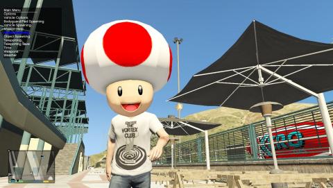 Mario Kart s'invite sur GTA 5
