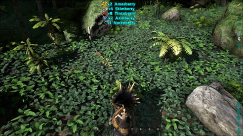 Apprivoiser et monter le Tricératops