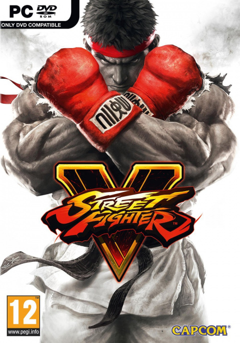Street Fighter V : Arcade Edition sur PC