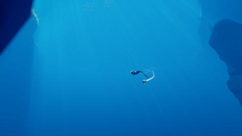 Abzû : une brève plongée dans les abysses