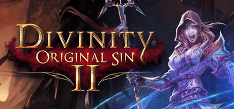 Divinity : Original Sin II - Definitive Edition