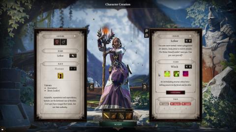 Divinity : Original Sin 2 : Au panthéon des RPG de 2017 ?
