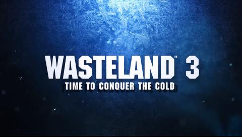 Wasteland 3 sur Linux