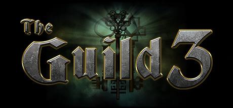 The Guild 3 sur PC