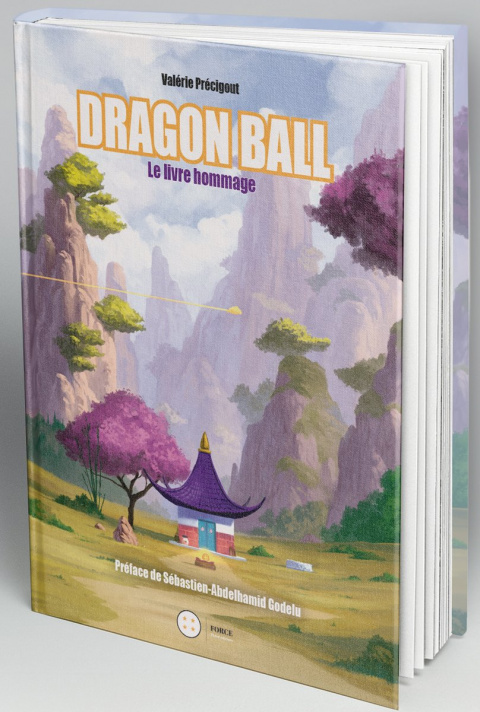 Third Editions : Dragon Ball. Le Livre hommage par Romendil