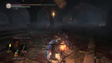 Dark Souls III : Ashes of Ariandel - Court, mais intense ?