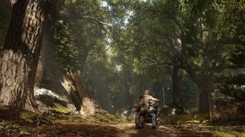 Promo Cdiscount : Days Gone + The Last Of Us Part II pour 59,99€