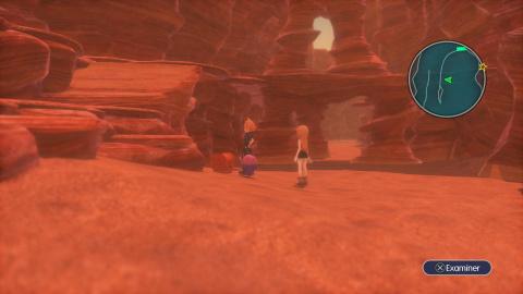 Chapitre XIII - Le château dans le désert