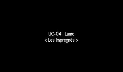 Capturer les Ultra-Chimères Katagami (Soleil)  / Bamboiselle (Lune)